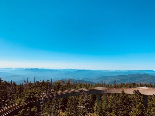 A view of the mountains from the Clingmans Dome viewpoint. Blue sky and the tops of trees at the highest point in the Great Smoky Mountains.