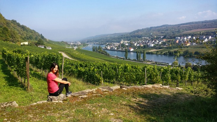 The best vineyard hike in Luxembourg is in Grevenmacher town