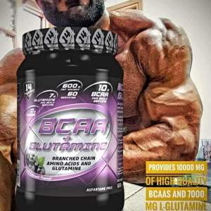 BCAA + GLUTAMINE POWDER 600γρ