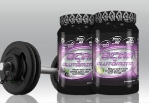 BCAA + GLUTAMINE POWDER 600γρ