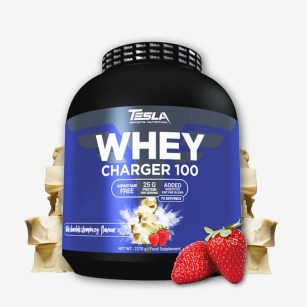 Τesla Whey Charger 100