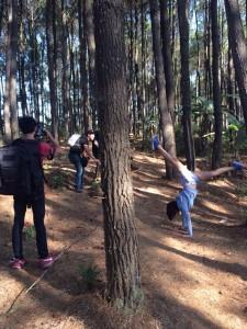 foto session dengan pohon pinus