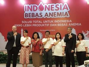 Nara Sumber dalam Indonesia Bebas Anemia