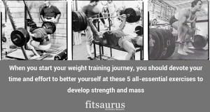 best muscle building workout plan for men Archives - fitsaurus