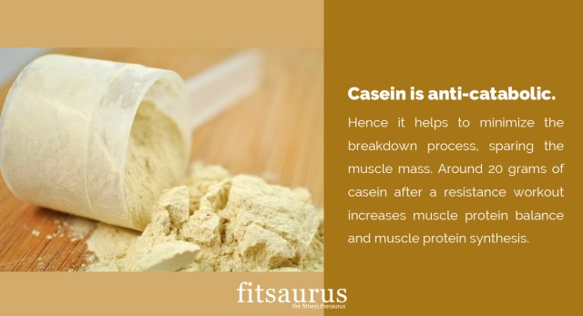 What Are The Benefits Of Casein Protein