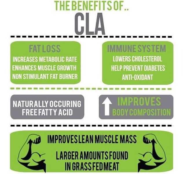 Benefits, Dosage & Side Effects of CLA for Bodybuilding and Fat Loss