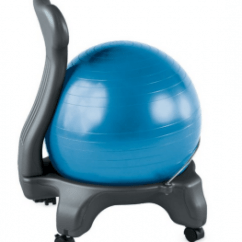 Ball Chairs For Students Christmas Chair Covers Silver The Best Yoga Reviews Top Exercise Seats Original Gaiam