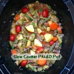 Load this slow cooker paleo pot with protein, sweet potatoes, veggies, & a homemade spice blend. This easy one-pot recipe can also be made vegetarian.