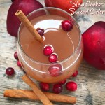 Holiday season means entertaining. This slow cooker spiked cider recipe using all-natural fruit will have your house smelling amazing while adding a nice 'spike' to your punch.