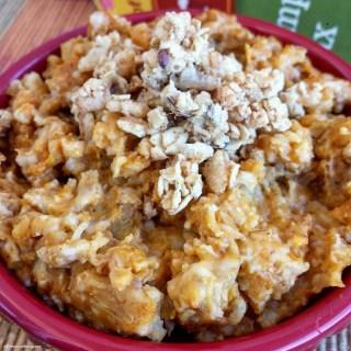 Slow Cooker Pumpkin Granola Oatmeal