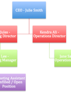 Business organization chart and structure bancaresponsable contingency plan example small elegant the optometry also rh masinky