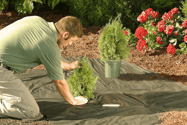 landscaping insurance cost coverage