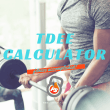 fitstinct tdee calculator