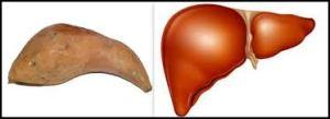 Hepatitis- B हेपेटाइटिस बी के कारण लक्षण निदान और उपाय