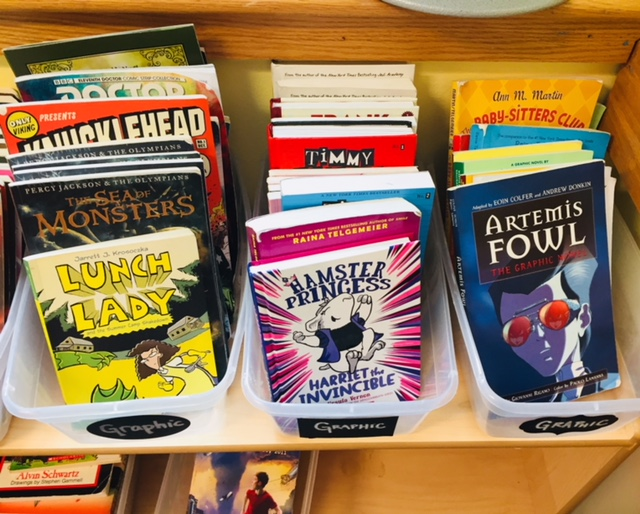 Graphic novels make up a large part of my classroom library.