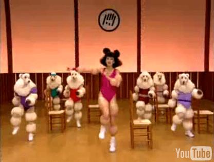 poodles-3