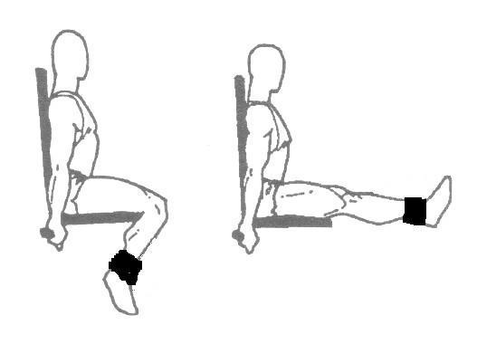 leg-extension-exercise