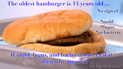 The oldest hamburger