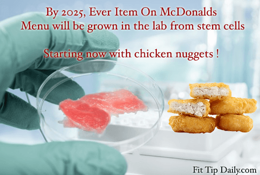 stem cell chicken nuggets