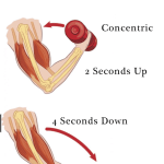 The 8 Seconds That Could Change Your Muscle Definition – Fitness Tips