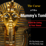 """The """"Mummy's Curse"""" Could Be Living in Your House"""