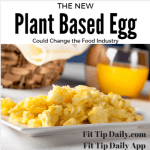The New Plant Based Egg Could Change the Food Industry