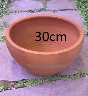 Clay or Terra-cotta