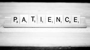 Patience growing your blog