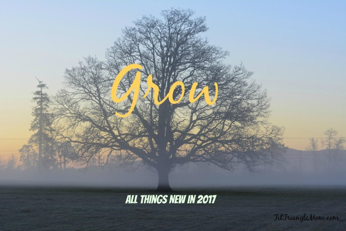 All Things New in 2017. Your goals and resolutions simplified into one word- Grow.