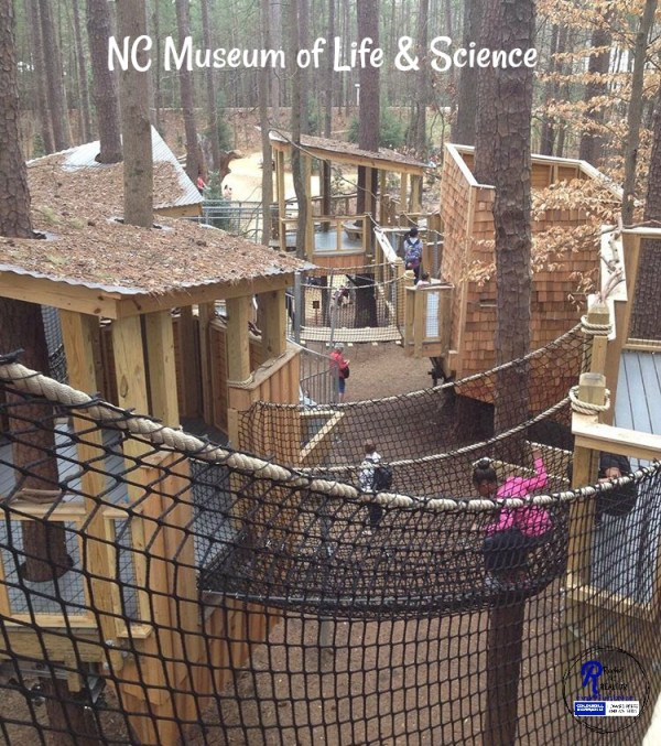 museum of life and science in durham, nc