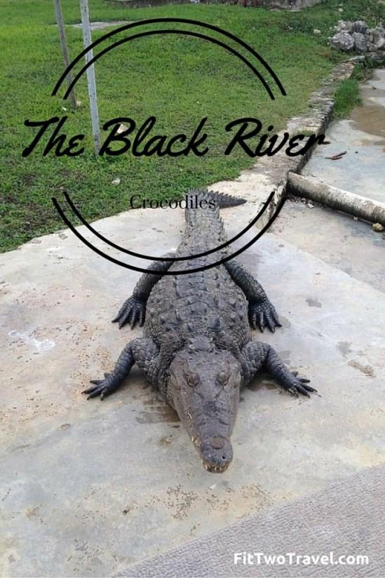Black river jamaica crocodiles fittwotravel.com