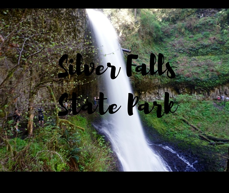 The Beauty in Silver Falls State Park