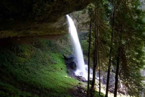 silver falls trail of ten falls fittwotravel.com