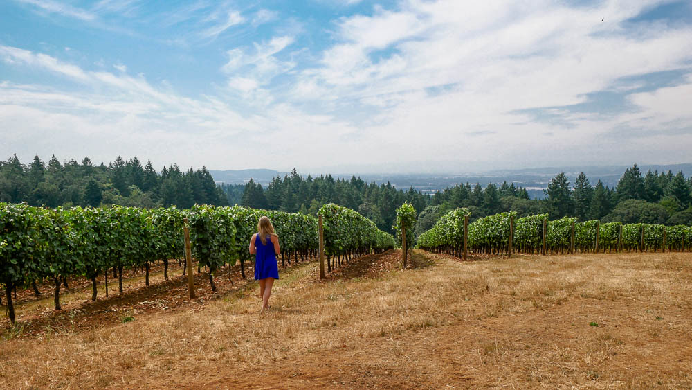 Oregon Wine Country Guide: 8 Wineries to Visit in the Willamette Valley