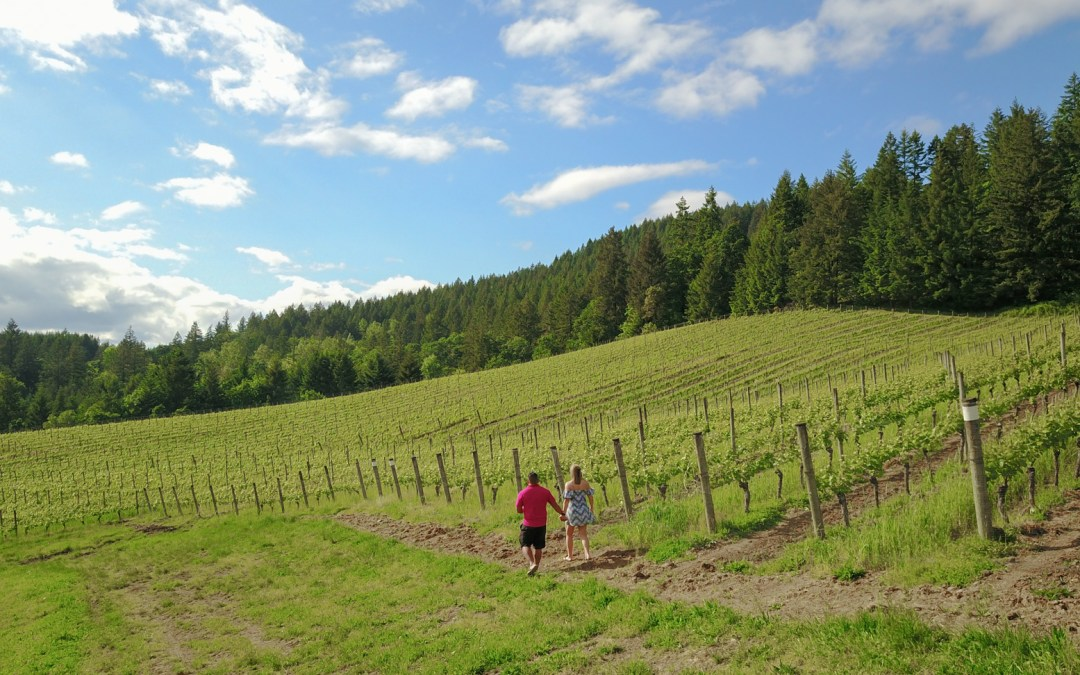Exploring Portland's Backyard: Things to do in Oregon's Tualatin Valley