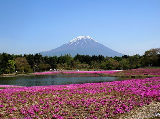tokyo to mt fuji day trip japan fittwotravel.com