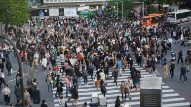 2 weeks in Japan Shibuya crossing