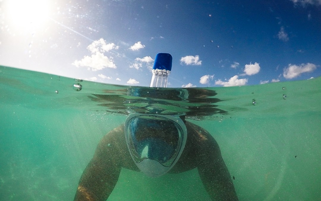The Guide to the Best Snorkel Mask 2019