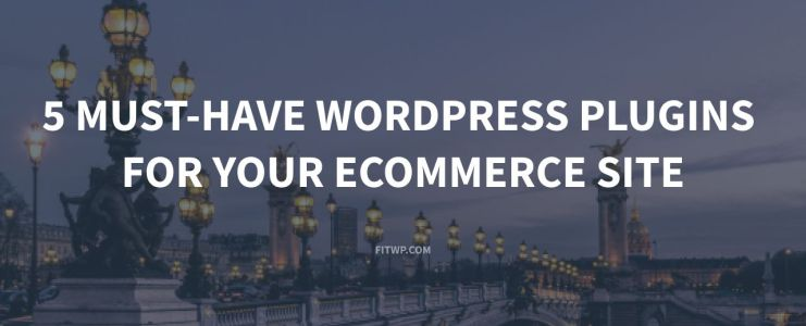 5 Must-have wordpress plugins for your ecommerce site