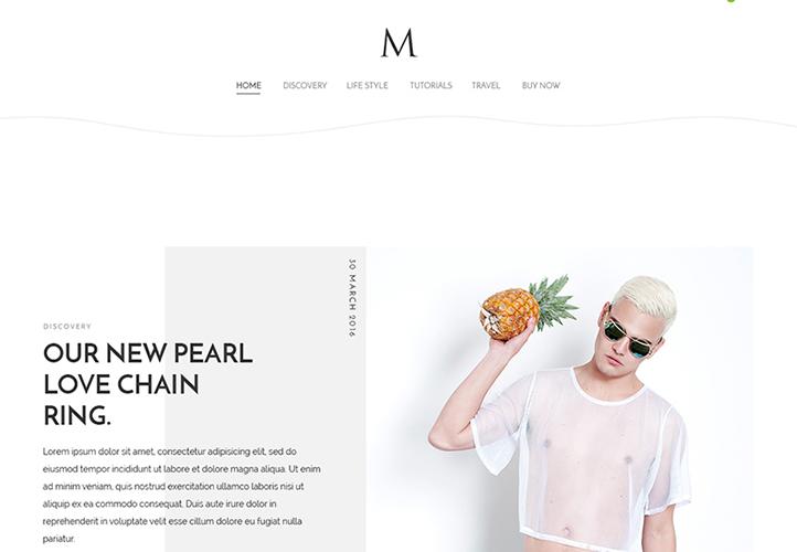 TheM WordPress Theme Desktop