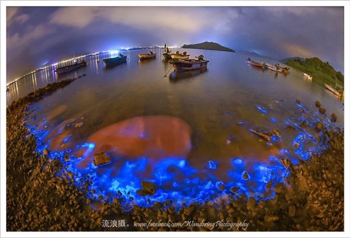 「流浪攝」屬於香港人的藍眼淚 (續篇) 6