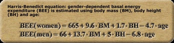 %e5%a6%82%e4%bd%95%e8%a8%88%e7%ae%97%e8%ba%ab%e9%ab%94%e6%af%8f%e5%a4%a9%e6%b6%88%e8%80%97%e5%a4%9a%e5%b0%91%e7%86%b1%e9%87%8f-3a