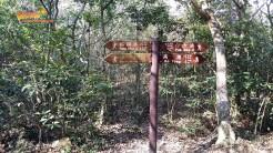 [康文署推介行山路線] 猴塘嶂上執牛耳 6