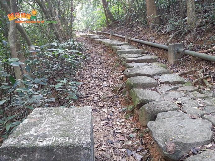 [康文署推介行山路線] 百花林下訪名穴 8