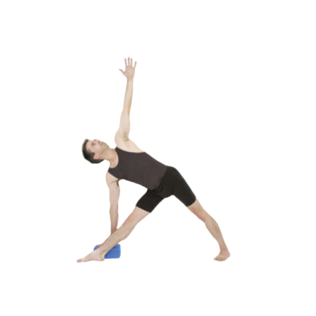 Gentle variation of Triangle posture - FITZABOUT