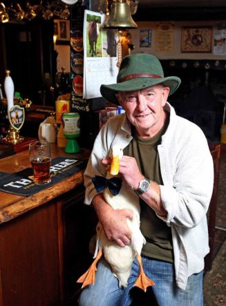 Duck in pub, which shows up when you google Dog in Pub
