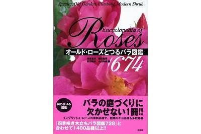 オールドローズとつるバラ図鑑674