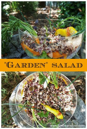 Fun and tasty garden salad with rice and dip
