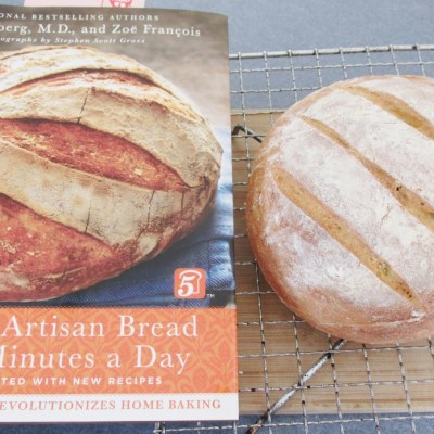 Ready for a bread revolution? Book review: The New Artisan Bread in 5 Minutes a Day