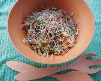 asian slaw with noodles